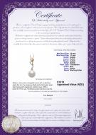 product certificate: FW-W-AAAA-1011-P-Brianna