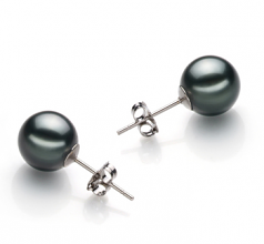 Black 9-10mm AAA Quality Tahitian Cultured Pearl Earring Pair