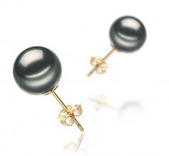 Black 9-10mm AA Quality Tahitian Cultured Pearl Earring Pair