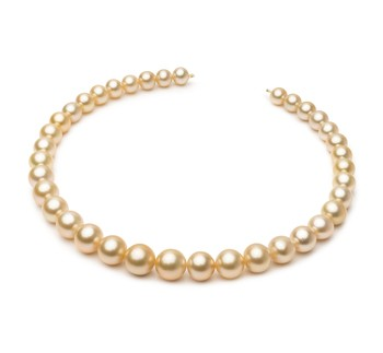 18-inch Gold 9.3-13.2mm AA+ Quality South Sea 14K Yellow Gold Cultured Pearl Necklace