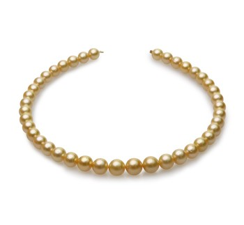 18-inch Gold 9-12mm AA Quality South Sea 14K Yellow Gold Cultured Pearl Necklace