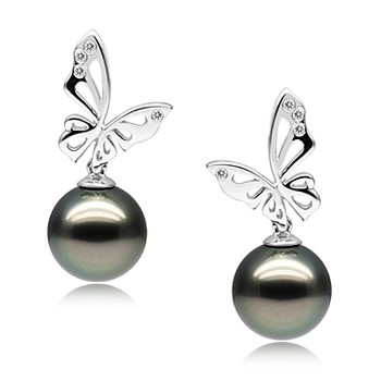 Butterfly Black 10-11mm AAA Quality Tahitian 14K White Gold Cultured Pearl Earring Pair