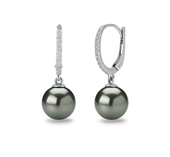 Black 10-11mm AAA Quality Tahitian 14K White Gold Cultured Pearl Earring Pair