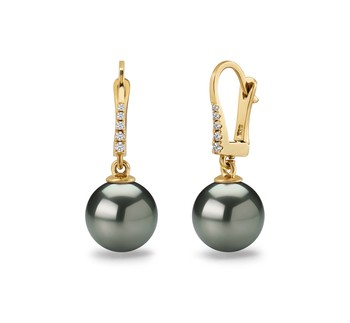 Black 10-11mm AAA Quality Tahitian 14K Yellow Gold Cultured Pearl Earring Pair