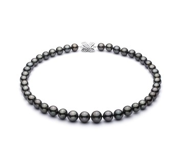 Black 9.5-11mm AAA Quality Tahitian 14K White Gold Cultured Pearl Necklace