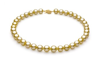 Gold 10.89-12.75mm AAA Quality South Sea 14K Yellow Gold Cultured Pearl Necklace