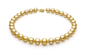 Gold 11.53-15.2mm AAA+ Quality South Sea 14K Yellow Gold Cultured Pearl Necklace